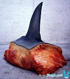Aileron de requin